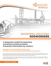 Occupational Health Risks: Rodworkers